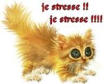je stresse trop